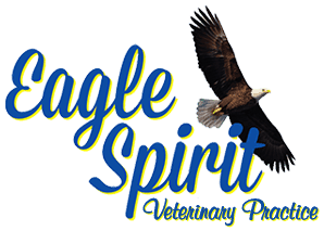 Eagle Spirit Veterinary Practice